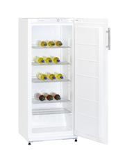 GCKS270 - Lagerkühlschrank